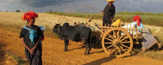 Myanmar Shangri La